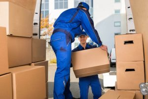 Best Movers and Packers Service Available in Abu Dhabi