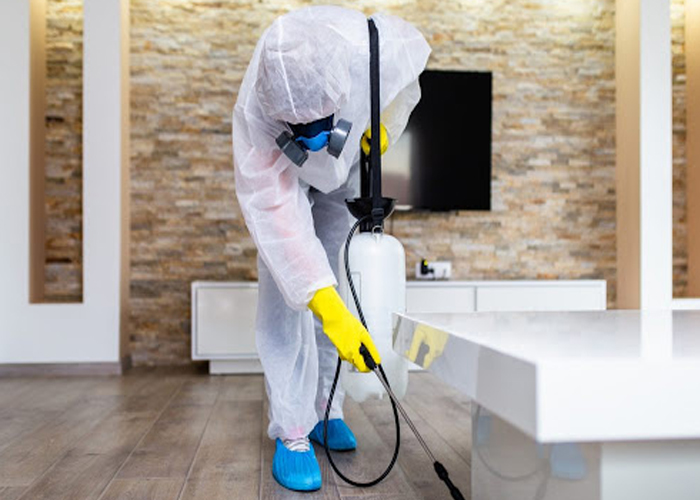 Sanitizationa and Cleaning Sevices